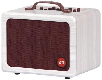 Lunchbox Acoustic Amp: 2-Channel Acoustic Guitar/Vocal Amplifier (ZT-00119979)