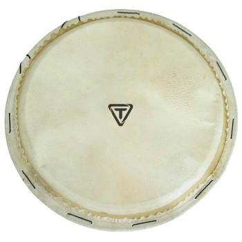 Traditional Series Replacement Djembe Head (14 inch.) (HL-00755429)