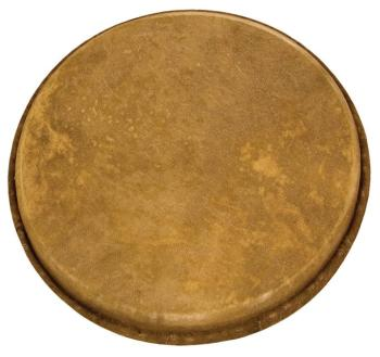 Goatskin Replacement Djembe Head (11 inch.) (TY-00755716)