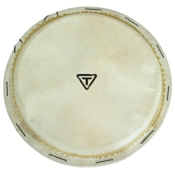 Traditional Series Replacement Djembe Head (10 inch.) (HL-00755733)